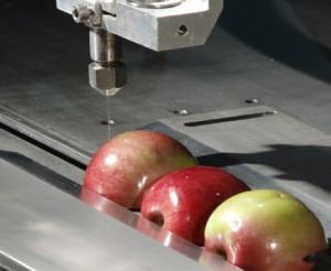 APPLE HALF CIMG0998 300x246 Novel Use For a Water Jet